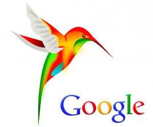 hummingbird-colibri-google