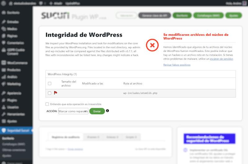 recuperar un wordpress hackeado 2