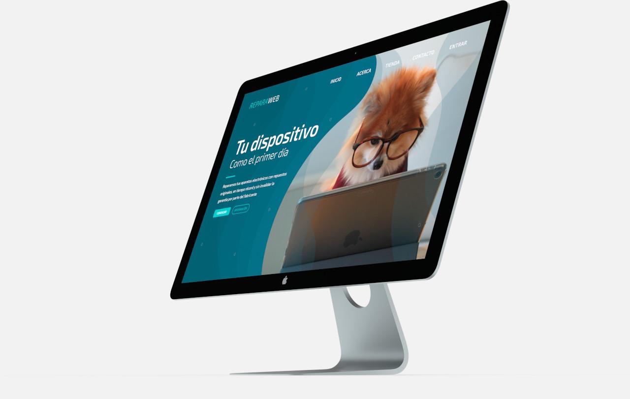 expertos diseño web